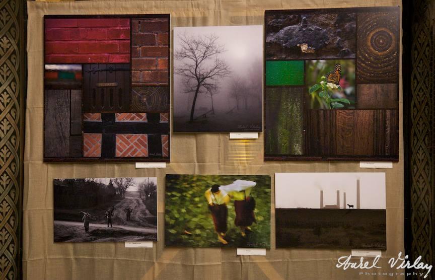 Galerie de fotografie eseu si colaje macro-fotografice