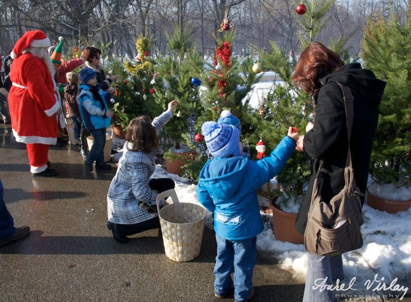Fotografii impodobire braduti in parcul Herastrau