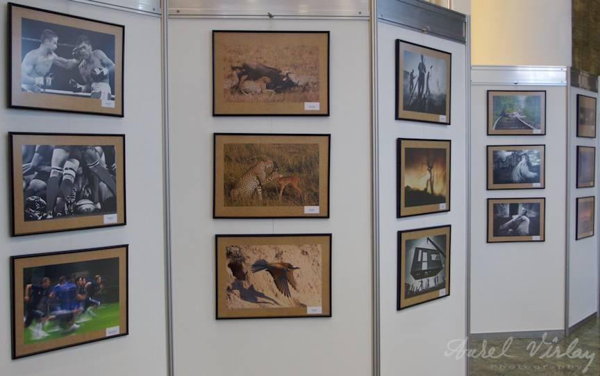 expozitia-fotografica-fotograful-anului-aafr