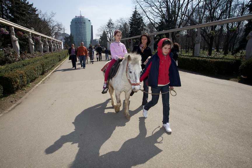 plimbari-ponei-parcul-Herastrau-Bucuresti