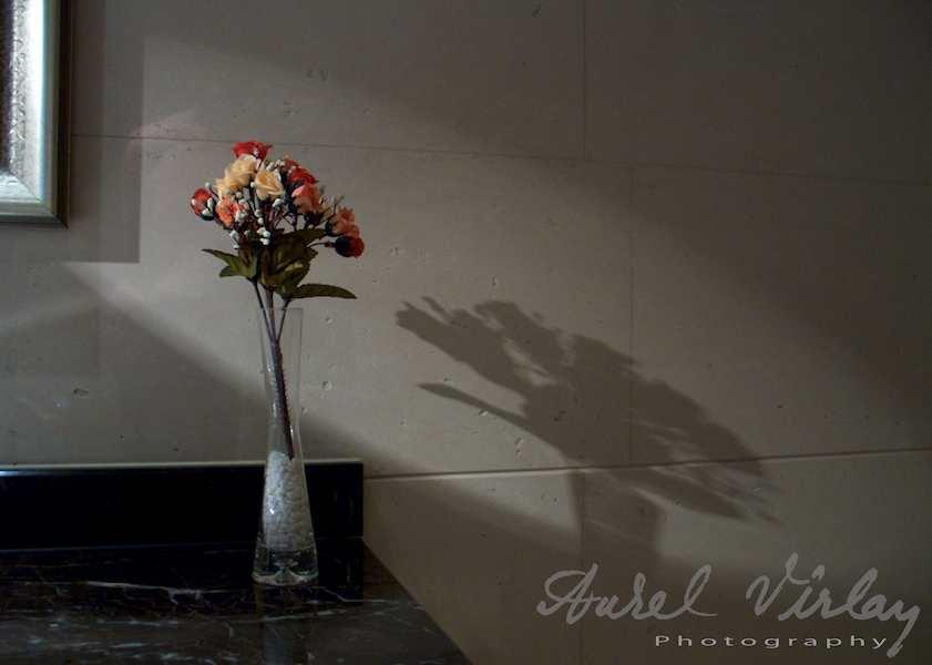 Vaza-flori-lumina-umbra-China