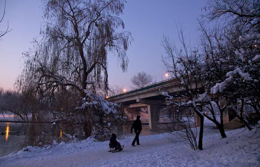 iarna-pe-ulita-fotoAV