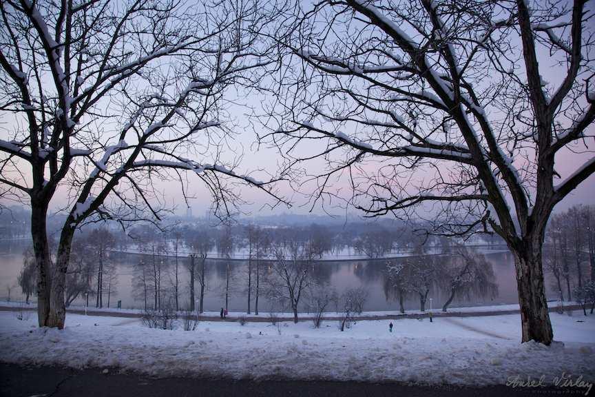 Parcul-Tineretului-copaci-lac-inghetat-fotoAV