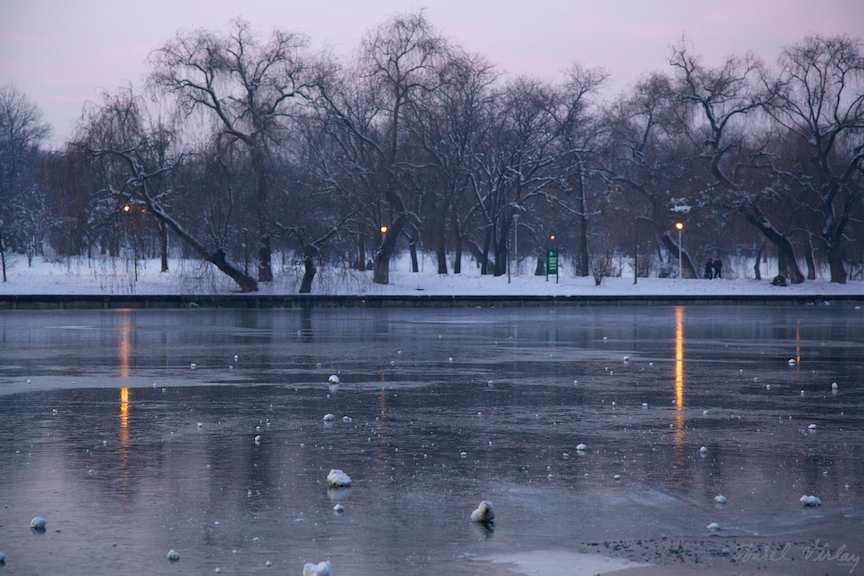 impresie-felinare-seara-iarna