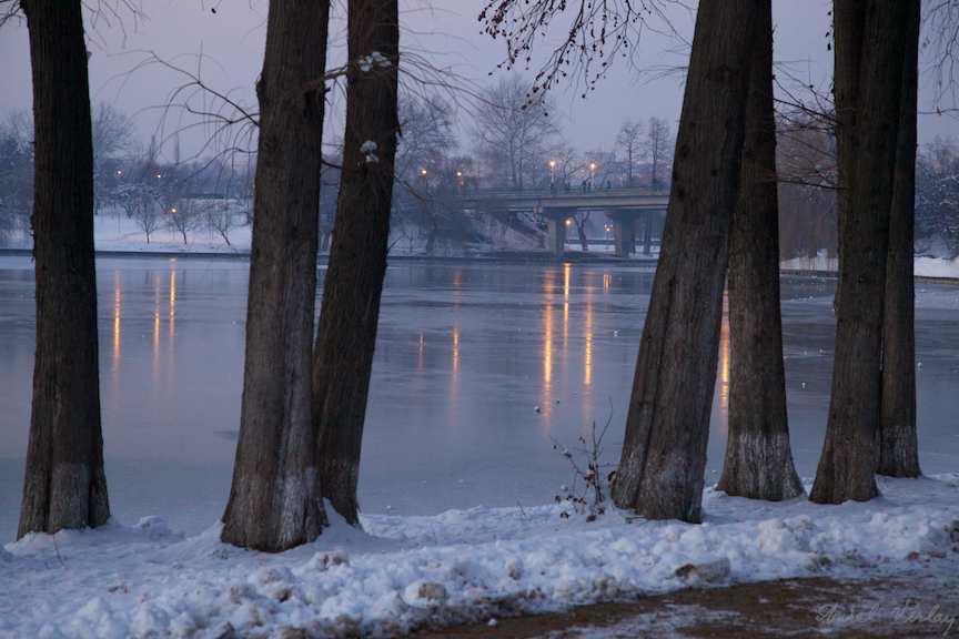 plopii-fara-sot-peisaj-iarna