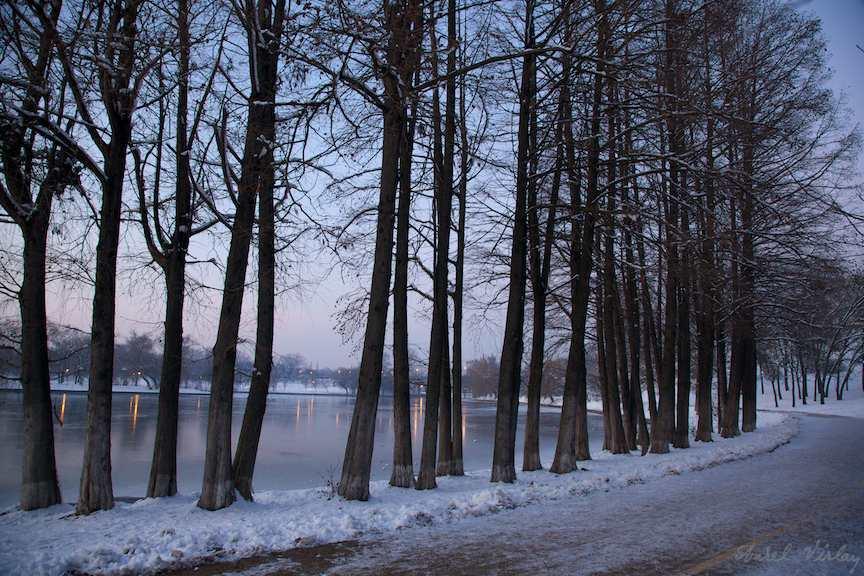 peisaje-iarna-plopii