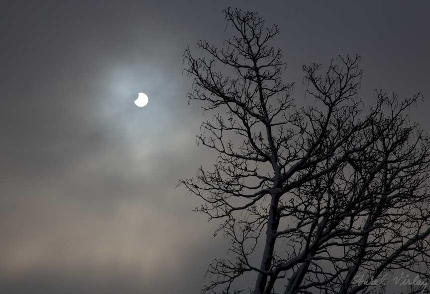 Eclipsa-partiala-soare