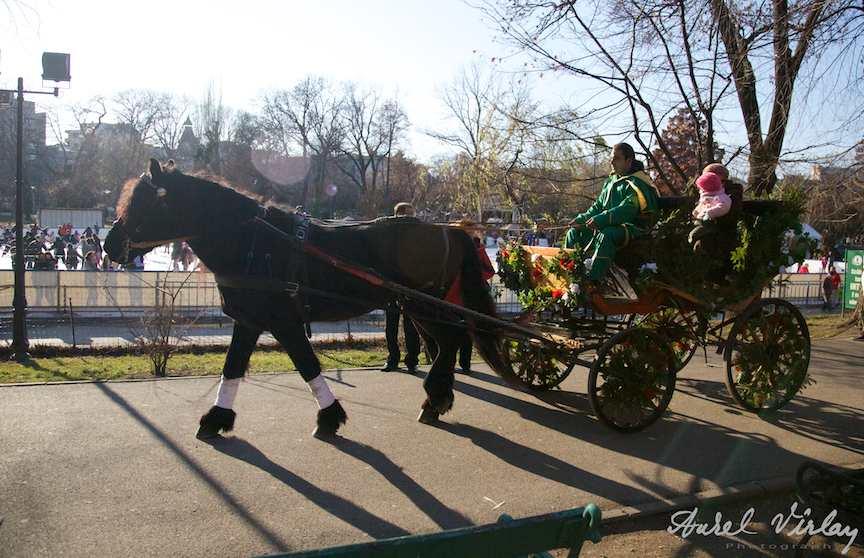 Imagine-retro-plimbarile-trasura-Bucurestii-mileniului-trei.