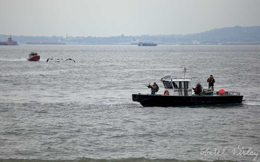 USA-NY-foto-circuite-vaporas-cameraman-pescarusi