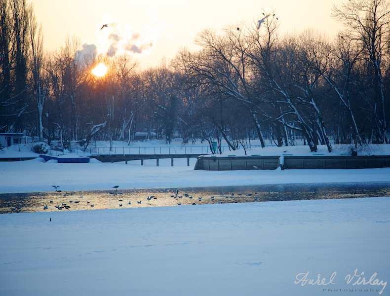 Apus-soare-iarna-pescarusi-lacul-Herastrau-inghetat