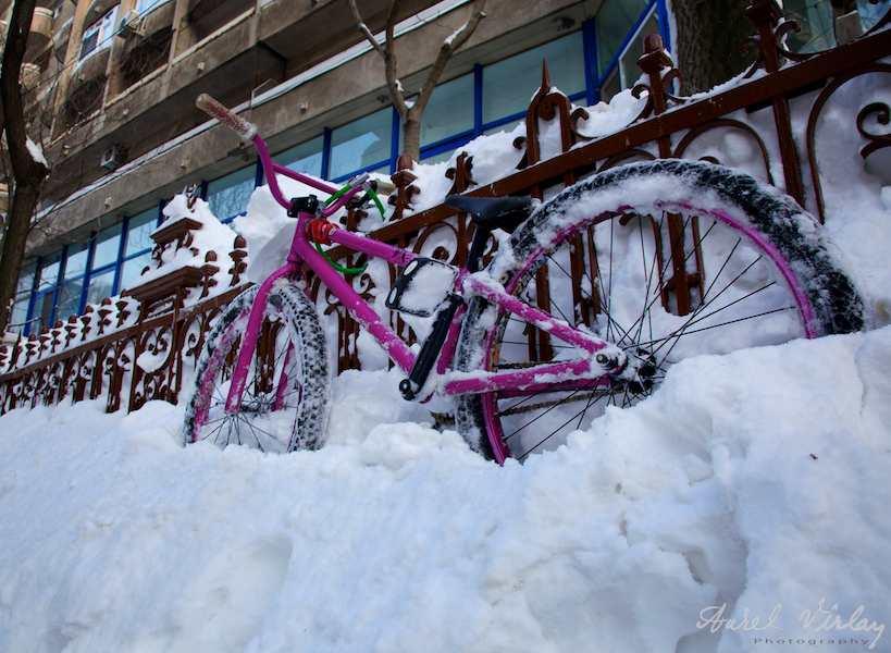 Fotografii-iarna-Bucuresti-bicicleta-mov