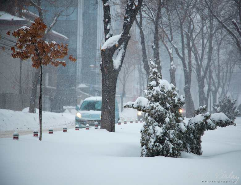 Fotografii-iarna-Bucuresti-9