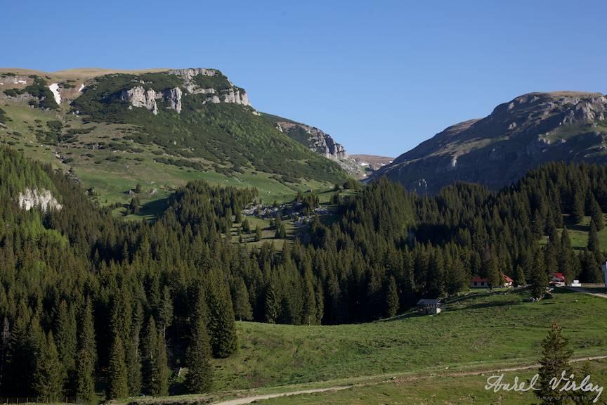 Versantul vestic al muntilor Bucegi.