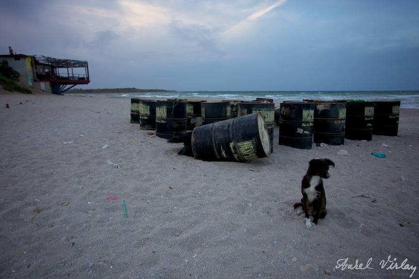 Fotografii-Vama-Veche-cainele-stingher-plaja-Desperados-butoaie