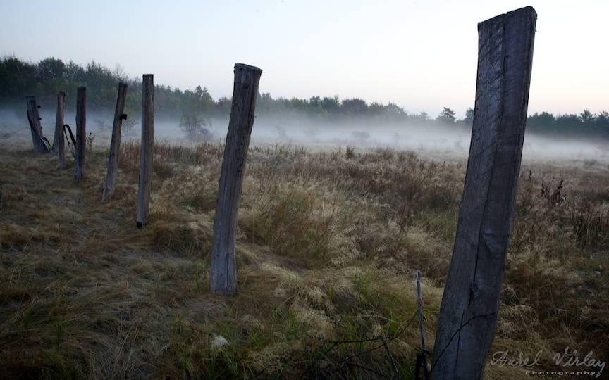 _Dimineata-rasarit-soare-ceata-fotografie-peisaj-AurelVirlan-photography-1