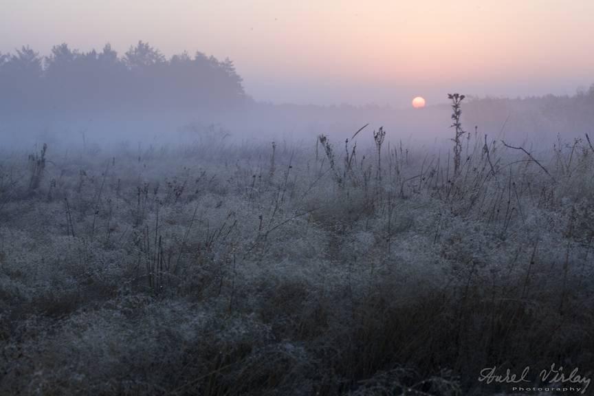 _Dimineata-rasarit-soare-ceata-fotografie-peisaj-AurelVirlan-photography-9