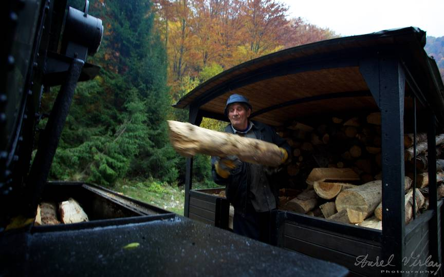 Mocanita-old-train-wood-landscape=photography-photojournalism-Aurel-Virlan-13