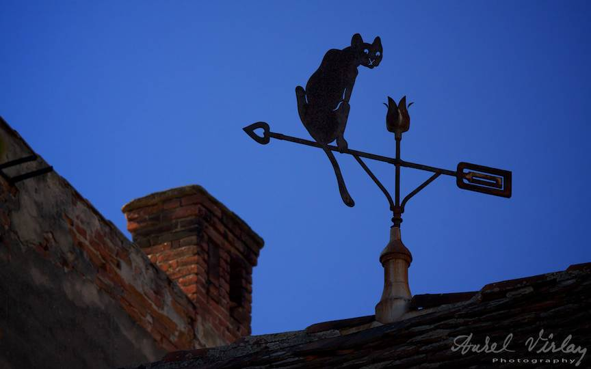 Black-cat-roof_Sibiu-Romania-fotografii-peisaj-citadin-city-photo-landscape-AurelVirlan-20