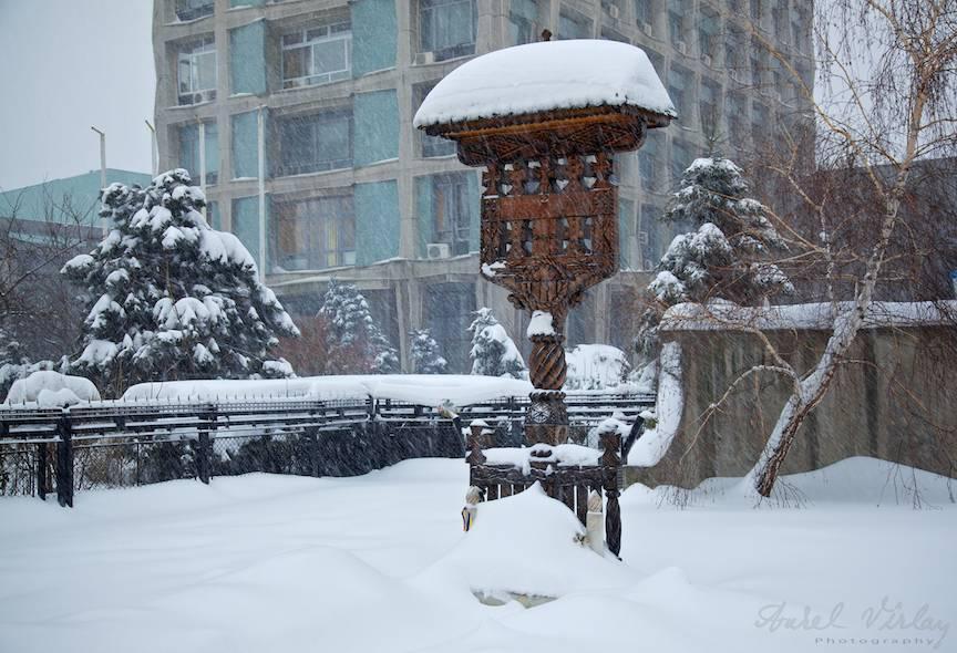 Top15-cele-mai-frumoase-fotografii-din-Bucuresti-Capitala-sub-Zapada-B365-Aurel-Virlan-4