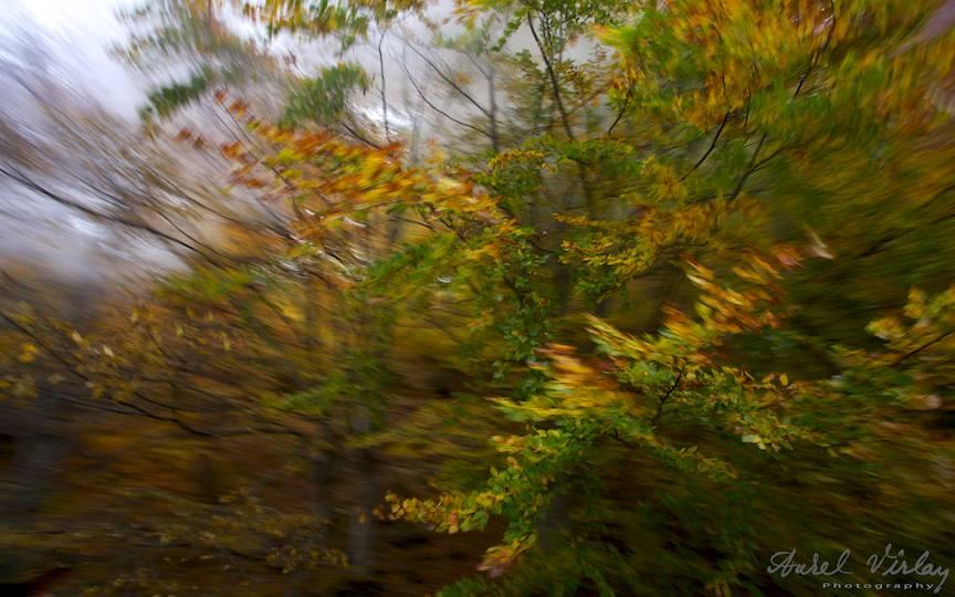 Aparatul-foto-in-miscare-laterala-tren-mocanita_Travel-photography-Aurel-Virlan-peisaje-