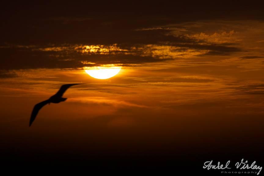 Fotografii-Vama-Veche Rasarit Soare Rosu