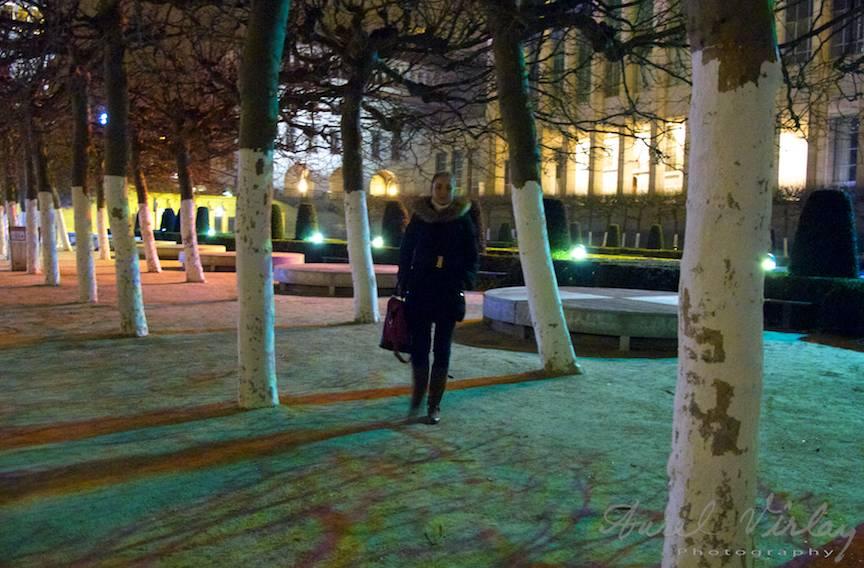 Bruxelles-Fotografie-printre-copacii-fara-sot