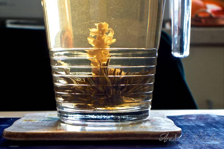 Jasmine-Tea-Foto-Leica-DLux6-2