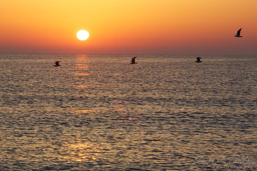 Vama-Veche FotografieAV Pescarusi la rasaritul soarelui