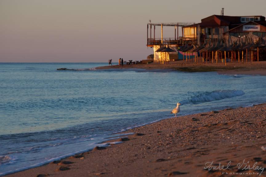 Vama Veche imagini fotoAV -4 pescarusul lumina rasarit soare