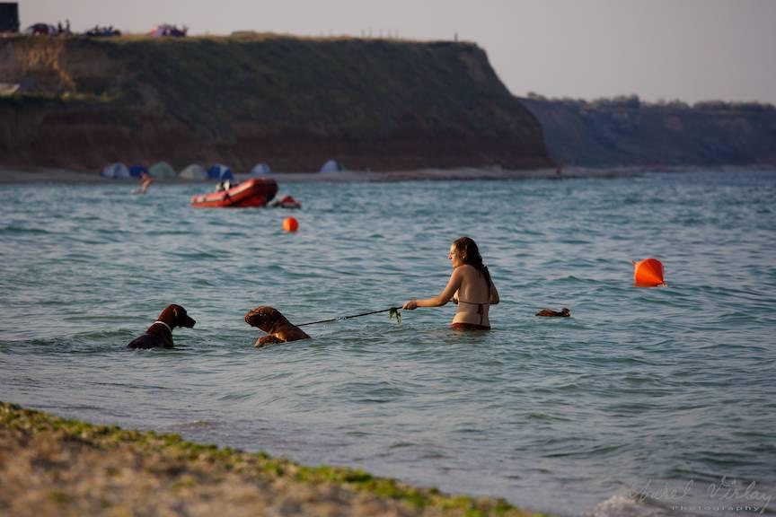 Fotografii Vama Veche plaja - fata si cainii in apa marii.