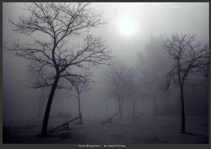 Fotografie Ceata Matinala *Lost Memories*