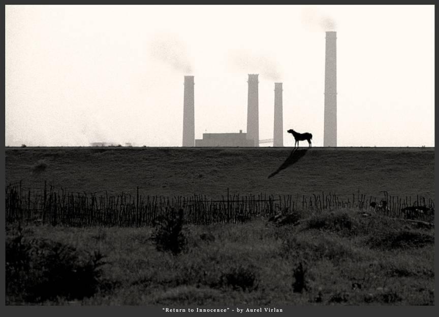 Fotojurnalism cu Leica R3 pe pelicula *Return to Innocence*