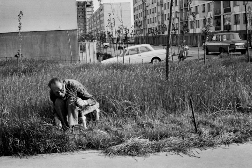 *Bucharest. The Dromul Taberi quarter* adica o fotografie din 1975 in Drumul Taberei Bucuresti.