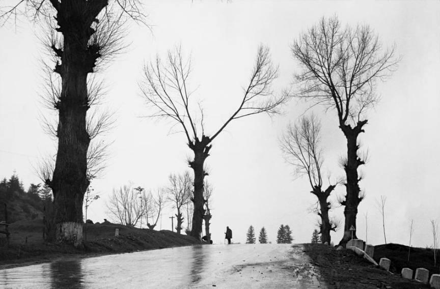 Peisaj Alb Negru din Bucovina vazuta de Bresson prin obiectivul foto al aparatului foto Leica.