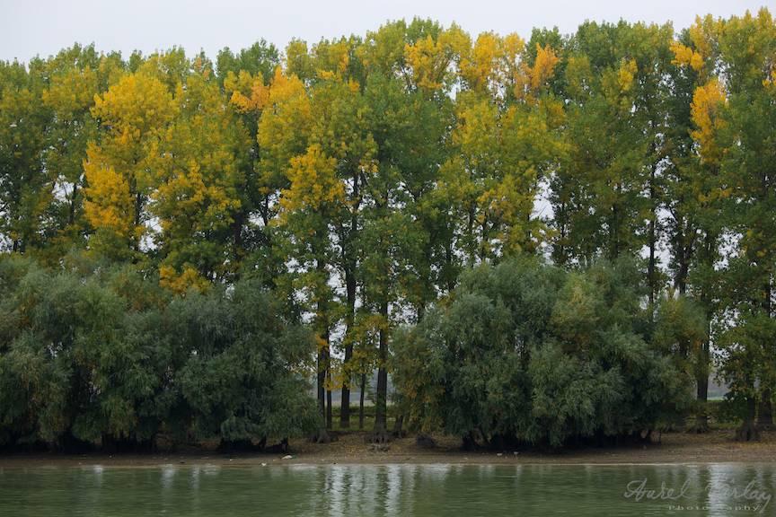 Fotografii toamna in Delta Dunarii.