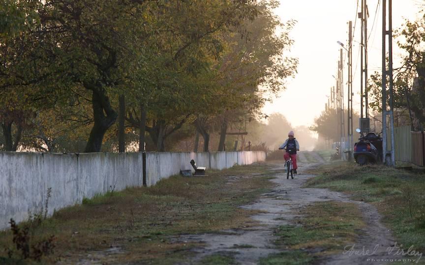 Fotografie dimineata devreme cand ceata-i lipita de drum.
