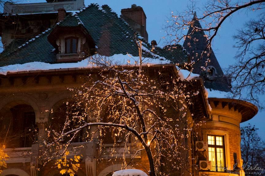 Detalii fotografice in prima zi de iarna din Bucuresti.