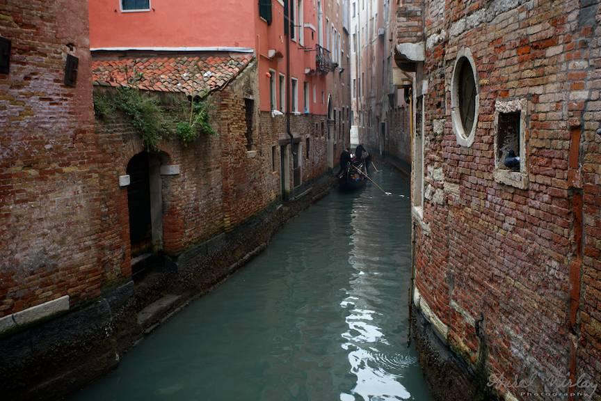Gondole intre Caramida si vegetatie pe canalele venetiene.