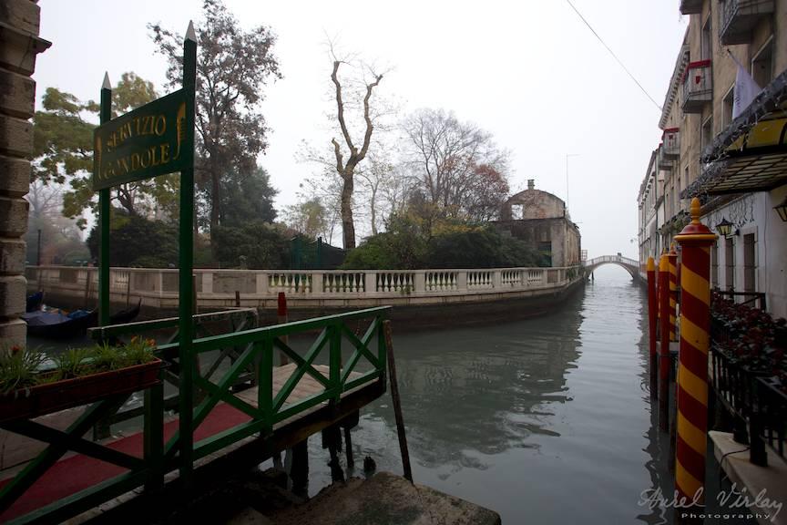 Oaza de verdeata in Venetia.