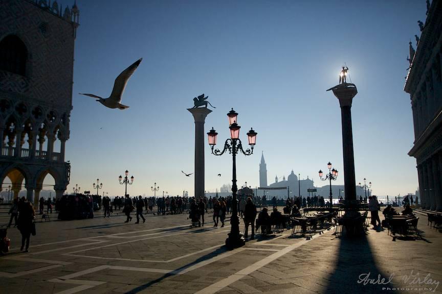Siluete de pescarusi printre turnurile cu statui din Piateta San Marco.