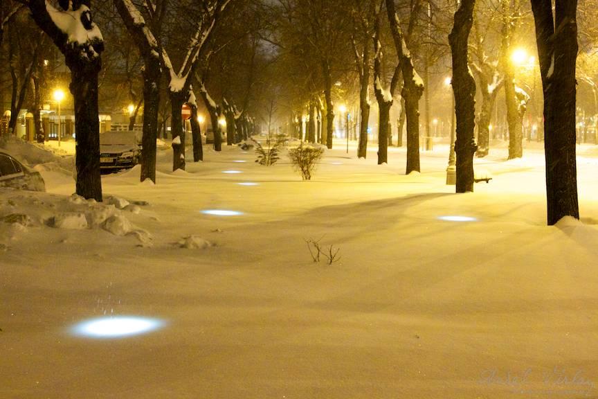 Perspectiva nocturna a copacilor, a felinarelor si a spoturilor de lumini de sub zapada.