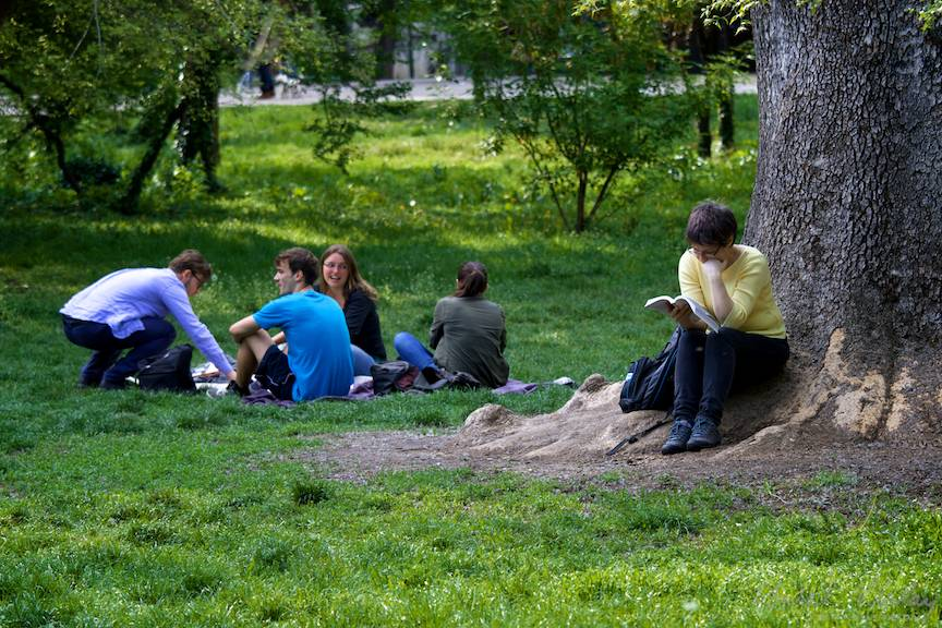 Lectura la umbra unui platan urias al parcului.