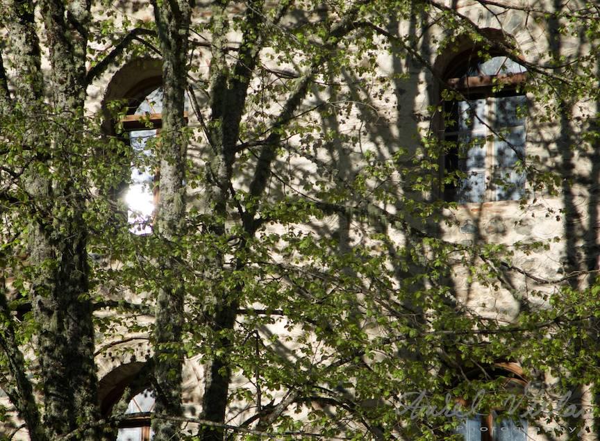 _Manastirea Rila Bulgaria Foto-Aurel-Virlan 18 sclipirea soarelui in fereastra chiliei unui monah