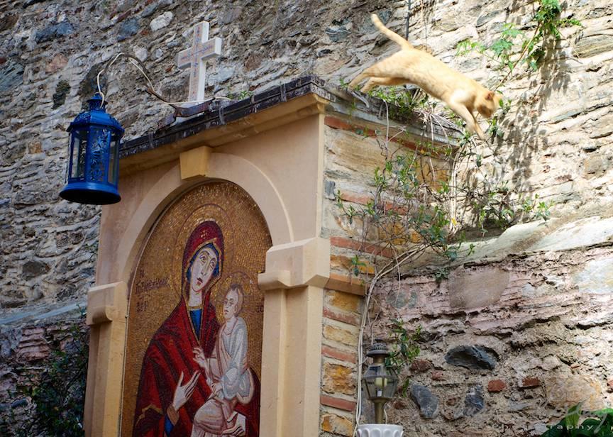 _Pelerinaj-Muntele-Athos-Foto-AurelVirlan-Emails147