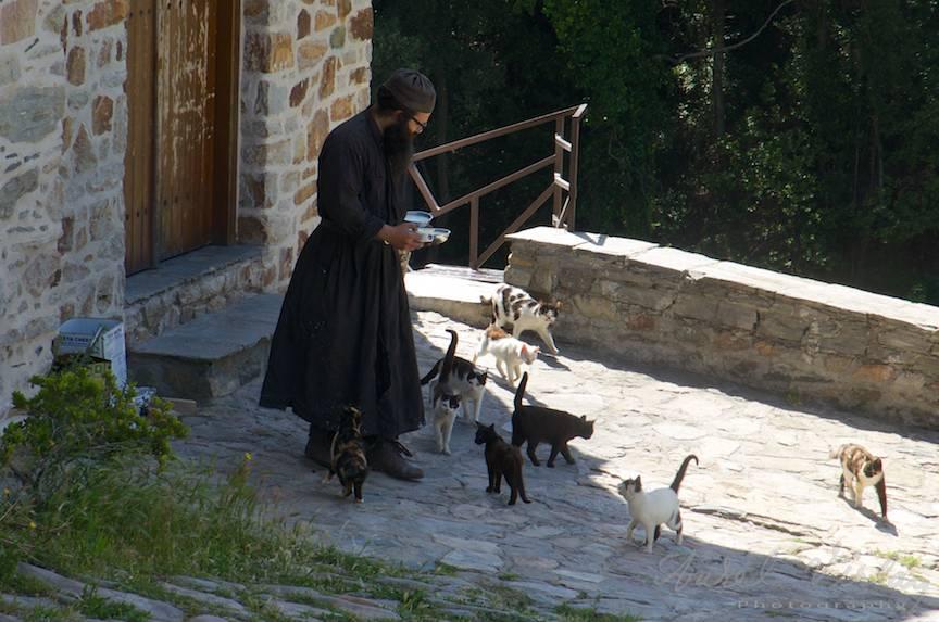 _Pelerinaj-Muntele-Athos-Foto-AurelVirlan-Emails188