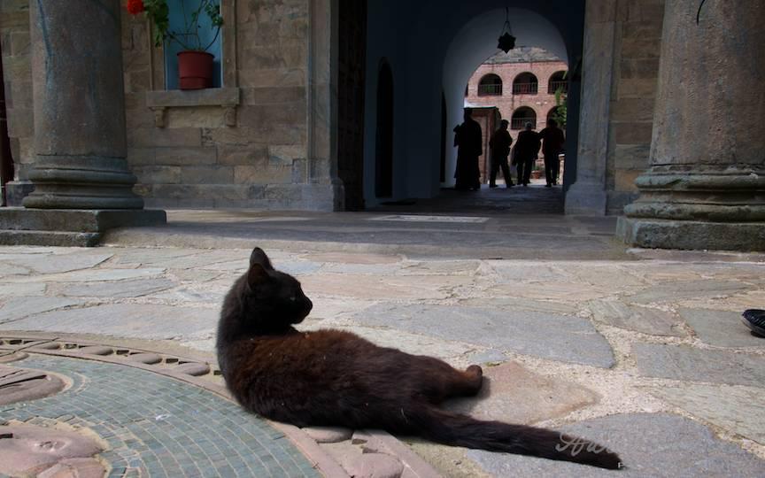 _Pelerinaj-Muntele-Athos-Foto-AurelVirlan-Emails57