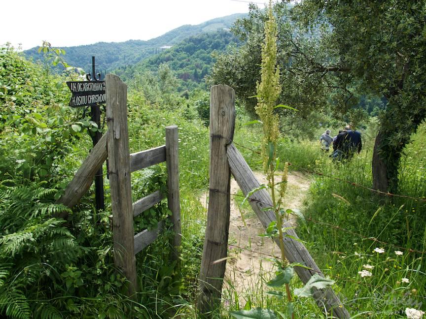 Unele treceri imi aduc aminte de peisajele de la bunici cu portile din spatele gradinilor.