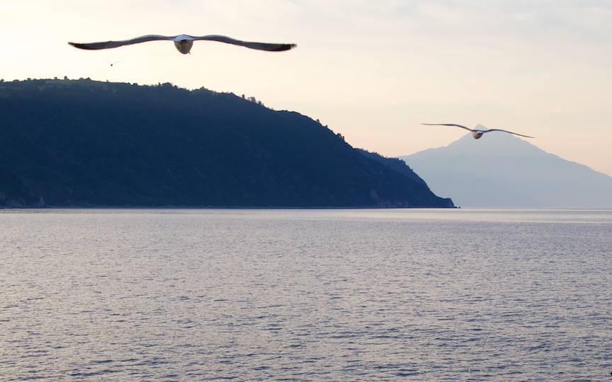 _Pelerinaj Muntele Athos Foto-AurelVirlan cu pescarusi calauze