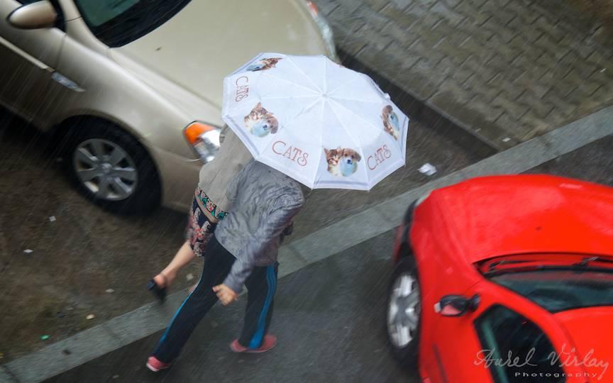 Ploaia de Mai in Bucuresti FotoreportajAurelVirlan EmailS4