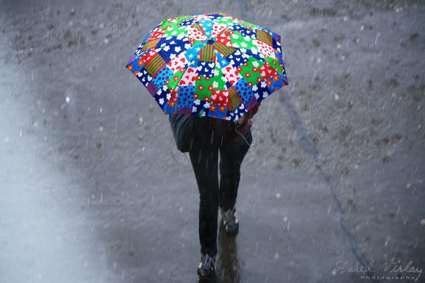 Ploaia de Mai in Bucuresti FotoreportajAurelVirlan EmailS5